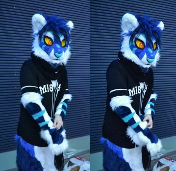 No, don't film me, I'm not ready! by RaviTheBlueTiger