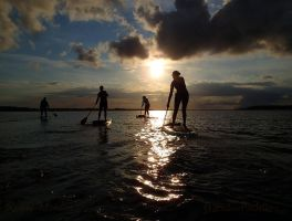 Stand and Paddle SUP 4588 by PaddleGallery