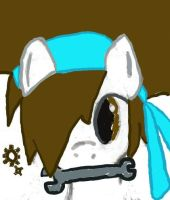Aisican Pony Facebook thingy.. by AisicanJonJon