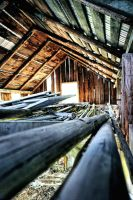 Rafters by basseca