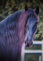 Horse Friesian Portrait Purple Pastel by PASTELIZATOR