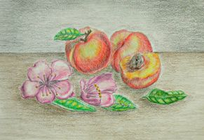 still life peaches by 123thuraya