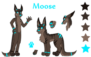 2013 Moose Ref Sheet by Rainbow-Moose