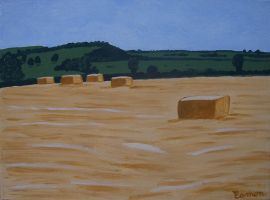 BALES NEAR CROOKEDWOOD by wwwEAMONREILLYdotCOM