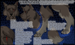 Wizard Hungarian ref. sheet. by KillerSandy
