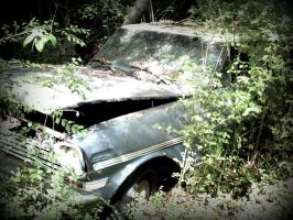 Random Old Car In The Woods by DeclanFire