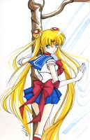 Sailor Moon marker by tachiik
