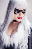BLACK CAT III by Vera-Chimera