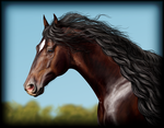 Realistic Bay Andalusian by Vizseryn
