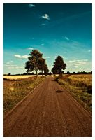Straight Road by Riffo
