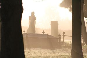 misty grave yard by tap69