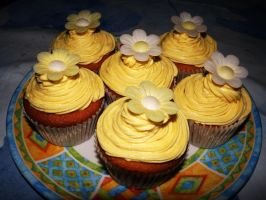 Cupcakes with honey icing by dimebagsdarrell