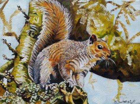 Perching Squirrel by Spangledstars