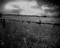 Not too far away by hidlight