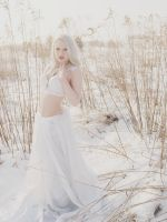 The Snow Queen6 by possion