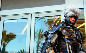 Photo Fridays- Raiden by TheXHunter08