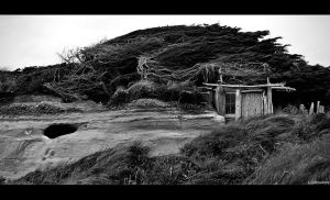Beachcomber's Lair by Limaria