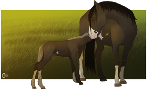 diRPG | New addition by FeatherCandy