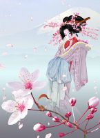 Sakura by iizzard