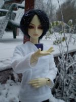 Catching Snow by Tamlin-Haven