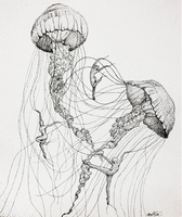 Jellyfish Dancers - stippling in ink by amygatorrr