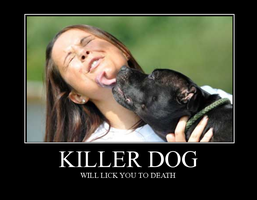 Killer dog by chili19