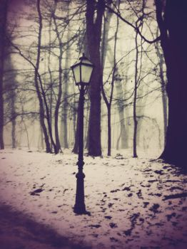 Winter by TurquoiseGrrrl