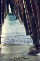 Under  Rosarito Mexico Pier by ceciliay