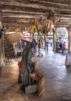 Hdr Mirepoix france by Louis-photos
