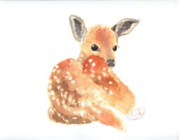 Deer by ketlin