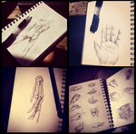 hand studies... by Nikuwicca