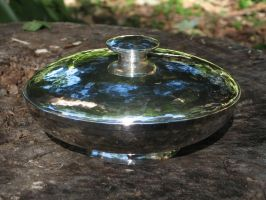 Silver Bowl by harlewood