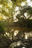 river 1 by sacral-stock