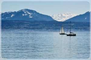 Sailing boats on Geneva lake by Rikitza