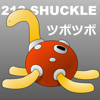 213 - Shuckle by Voltorb