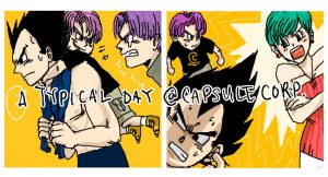 Typical day at Capsule Corp by koenta