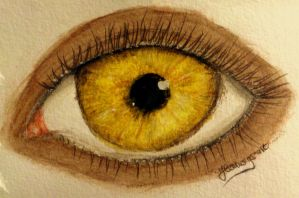 Hazel Levesque's Eye (Day 90) by Hedwigs-art