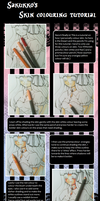 Colour Pencil Skin Colouring Tutorial by Sakukko