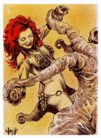 Red Sonja 01 by RobertHack