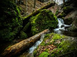 Cascades by Floriarty