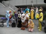 SacAnime Pokemon Group by wolfforce58