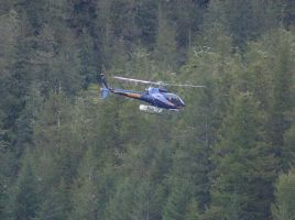 avalanche search and rescue 4 by DennisDawg
