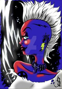 STORM PUNK by DOCGOOSE