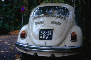 VW Beetle in Fall 4 by steppelandstock
