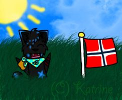 Norway's Natinoal Day by IronMeow
