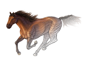 Color shading exercise - paint a horse by LadyAway