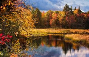 New Hampshire pond by muffet1