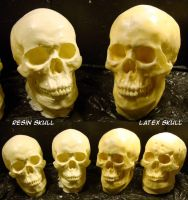 Resin and Latex Skulls by Uratz-Studios