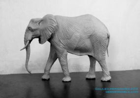 African Elephant About to be ready for mold making by GalileoN
