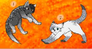 Cat Adoptables 10- CLOSED by CascadingSerenity